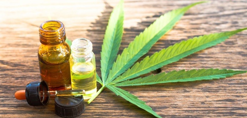 Changing Dynamics Of The Global Cannabidiol Oil Market
