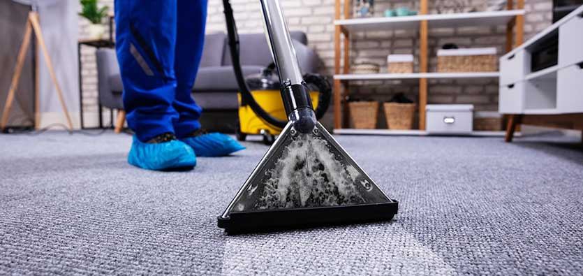 Our Carpet Cleaners in Irvine Better than those in Other Areas — Teletype